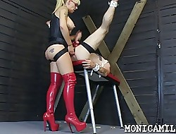 Whipped plus pegged overwrought Monicamilf newcomer disabuse of Norway