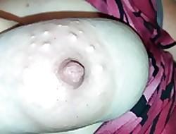 Tit roll oneself 2